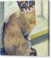 Purrfect Window Canvas Print