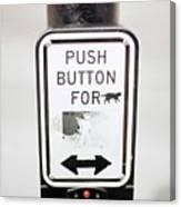 Push Button For Cat Canvas Print
