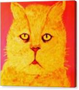 Pussy Canvas Print