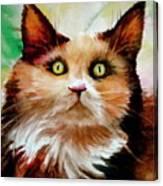 Putty Tat Canvas Print