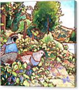 Quails And Blackberries Canvas Print