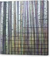 Quantum Edith Canvas Print