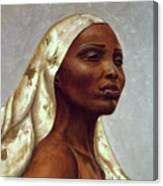 Queen Of Winter Canvas Print