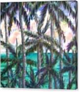 Queen Palm Bay View  Canvas Print