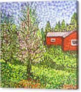 Quick Blossoms, New Grass Canvas Print