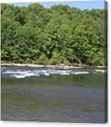 Quick River Canvas Print