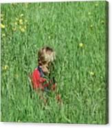 Quiet Fields Canvas Print