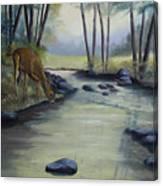 Quiet Moments Canvas Print