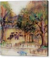 Quiet Pastures Canvas Print