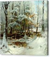 Quiet Winter Afternoon Canvas Print