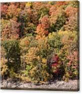 Quinnipiac River Color Canvas Print