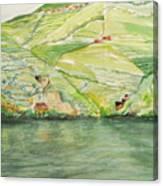 Quintas Along The Duoro Canvas Print