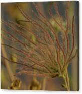 Quirky Red Squiggly Flower 4 Canvas Print