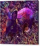 Rabbit Animal Baby Rabbit Bunny  Canvas Print