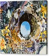 Rabbit Hole Or Robin Egg Canvas Print