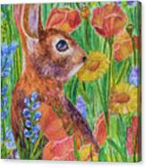 Rabbit In Meadow Canvas Print