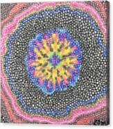 Rabbit's Eye View Canvas Print