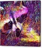 Raccoon Animal Cute Mammal  Canvas Print