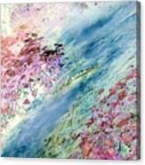 Rachel's River Canvas Print