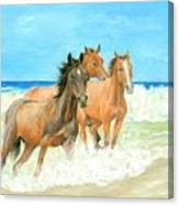 Racing The Surf Canvas Print