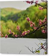 Radner Lake During The Spring Canvas Print