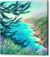 Ragged Point Canvas Print