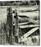 Rail Fence Canvas Print