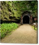 Rail Trail Tunnel 2 A Canvas Print