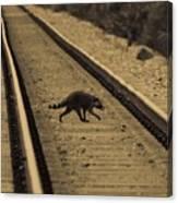 Railroad Bandit Canvas Print