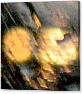 Rain 1 Canvas Print