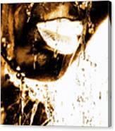 Rain Bronze Canvas Print