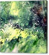 Rain Gloss Canvas Print