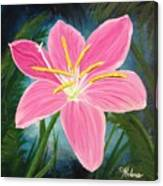 Rain Lily Canvas Print