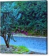 Rain Storm On Lake Linda Canvas Print