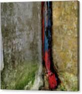 Rain Water Pipe Canvas Print