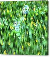 Rainbow Bubbles On The Grass Canvas Print