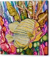 Rainbow-colored Sunfish Canvas Print