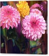 Rainbow Dahlias Canvas Print