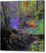 Rainbow Fairies Sweep Across The Landscape Canvas Print