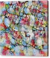 Rainbow Granite Canvas Print