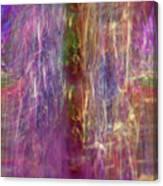 Rainbow In The Dark Canvas Print