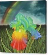 Rainbow Iris Canvas Print