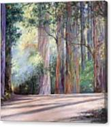 Rainbow Lane Canvas Print