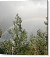 Rainbow Past The Treeline Canvas Print