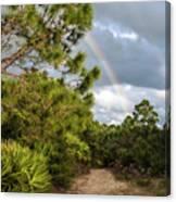 Rainbow Path Canvas Print