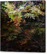 Rainbow Pickle Creek Reflections 6272 H_3 Canvas Print