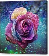Rainbow Rose In The Rain Canvas Print