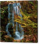 Rainbow Springs Waterfall Canvas Print