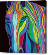 Rainbow Stallion Canvas Print