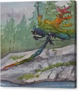 Rainbow Tree  Canvas Print